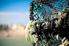 lobster-pots-st-ives_8547387325_o